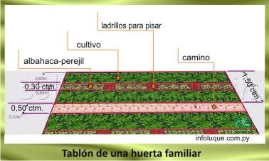 2-Cañada-San-Rafael-Luque-Escuela-Agrícola-de-Tarumandy-Río-Salado-arroyo-Aguapey-Paso-Pe-César-Meza-Departamento-Central-huerta-