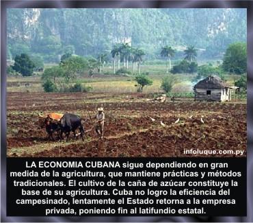 5-Bioenergy-Francia-Estados-Unidos-Rusia-Cuba-Chile-Unión-Soviética-Salvador-Allende-Milton Friedman-Mapuche-Camila-Vallejo-The-New-York-Times-Die-Zeit-